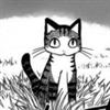 filmjolk's avatar