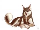 moarofthat's avatar
