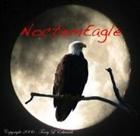 NoctemEagle's avatar
