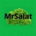 MrSalat's avatar