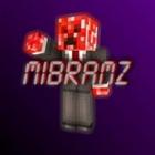 MiBramzMinecraft's avatar