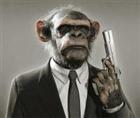 monkeybuttjr's avatar