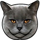 Xionanx's avatar
