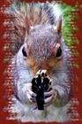 BoneSquirrel's avatar