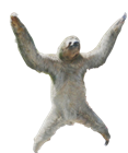 Fondue's avatar