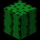 Conestar's avatar