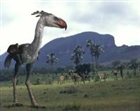 PaleoBird's avatar