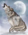 Interion864's avatar