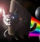 felescoto's avatar