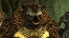 bioni5's avatar