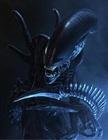 mattinator53's avatar