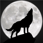 GhostWolf2398's avatar