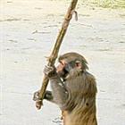 nylooj's avatar