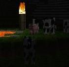 fishtaco567's avatar