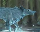 Cattylove's avatar