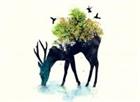Leaf7's avatar