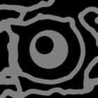 LedInfrared's avatar