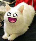 Sir_Kat's avatar
