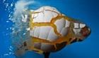 Turtleboy123123's avatar