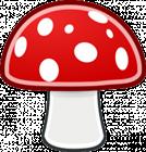 MushyMushroom's avatar