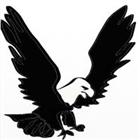 Torrusty's avatar