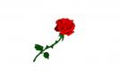 tocsynn's avatar