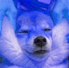 gislijohann's avatar
