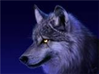 MCwolfie's avatar