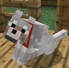 pupnewfster's avatar