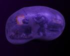 merrickmossman's avatar