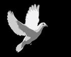 Pygianese's avatar