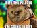 Furball75's avatar