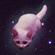 djscorch's avatar