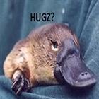 Platypus's avatar