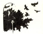 Ravenofthenorth's avatar