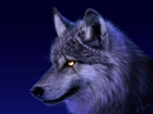 lcswolf's avatar