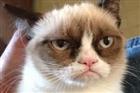 GrumpyDemon's avatar
