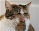 hjknb's avatar
