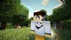 MineLabsMC's avatar
