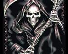osherziv's avatar