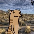 RMANCAP's avatar