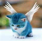 ambrosia1692's avatar