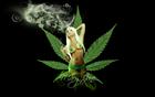 tandemsrevenge's avatar