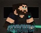 skyboyfly's avatar