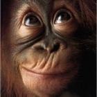 evilmunky010's avatar