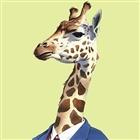 Jocus's avatar