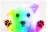 RainbowPuppy152's avatar