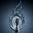 icesharkk's avatar