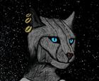 NoelRoadman's avatar