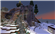 TreeSaplingPMC's avatar